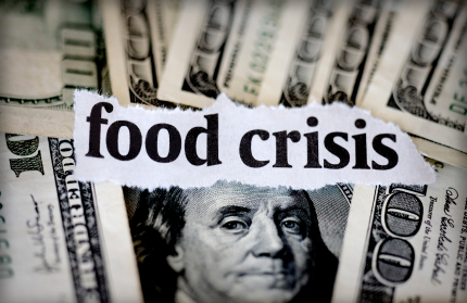 http://standeyo.com/NEWS/11_Food_Water/11_Food_Water_pics/110116.food.crisis.jpg